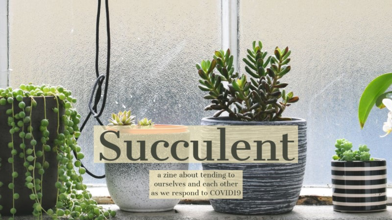 Succulent zine call for contributions