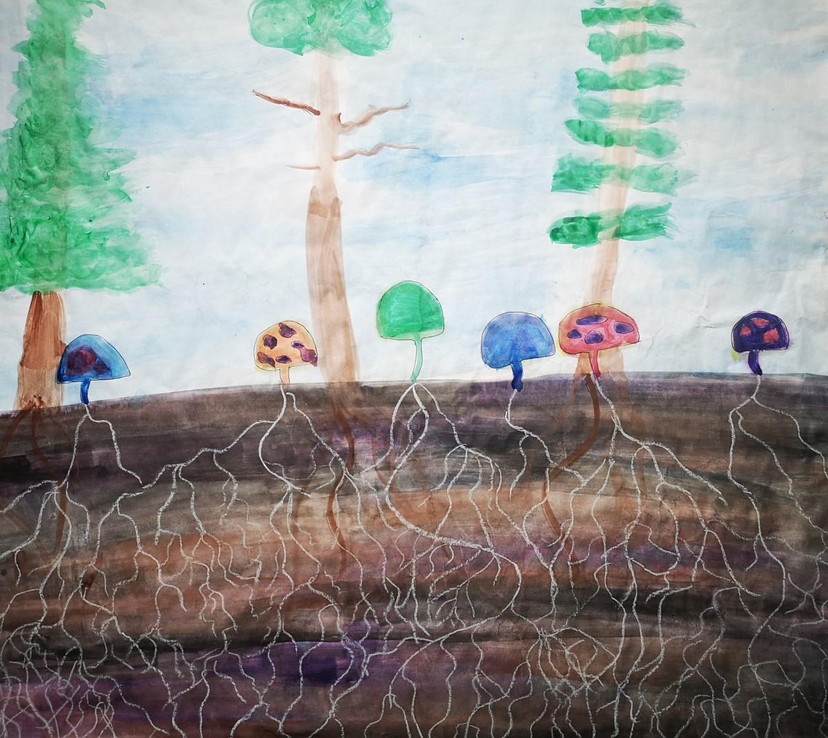 mushroom 2 by Lindsey Boyes